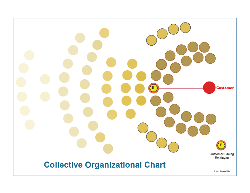 Collective-organizations-Org-Chart-